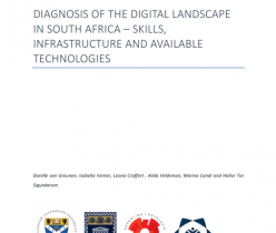 Common Good First: Diagnosis of the Digital Landscape in South Africa