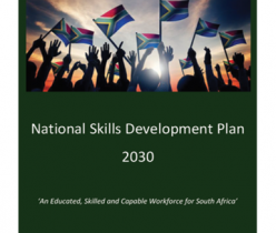 Department of Higher Education and Training (DHET): National Skills Development Plan